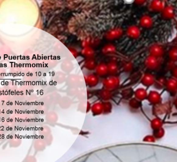 Jornadas de Puertas Abiertas Navideñas Thermomix® Málaga Mefistófeles 16